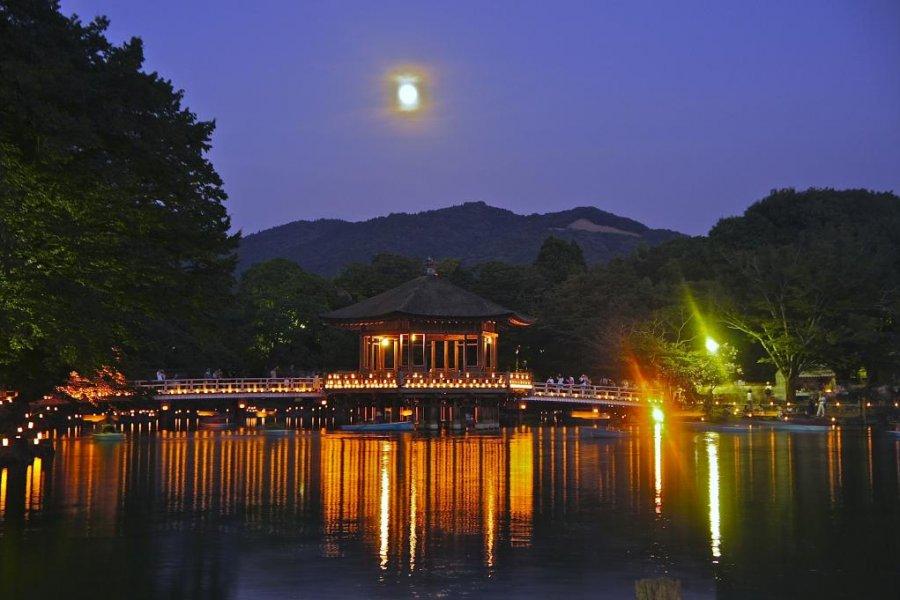 奈良燈花會與浮見堂